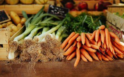 Walory zdrowotne żywności – o żywności przetworzonej i o metodach konserwacji