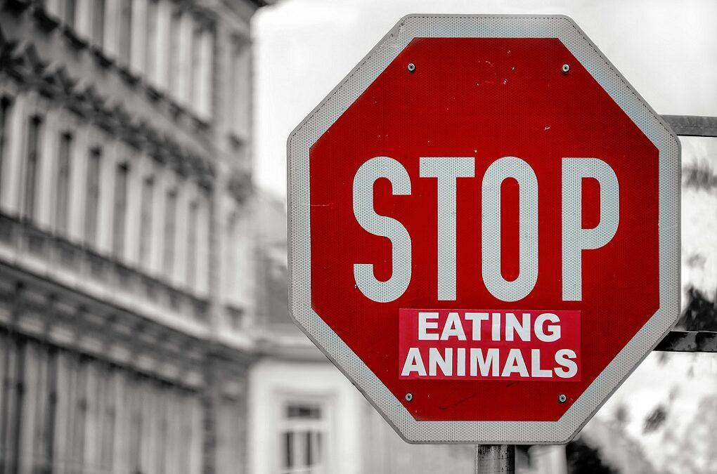 Jak zmieniać nawyki żywieniowe?